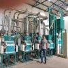 Tanzania Running 20t Maize Flour Milling Machine Complete Line