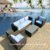 Garden Patio Wicker Hotel Home Rattan Sofa Set - Outdoor Furniture