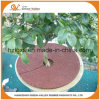 Factory Direct Sales Cheap Rubber Tree Ring Mat