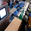 Fresh Fish Weight Sorting Machine with High Speed