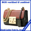 2017 Fashion and Leisure Handbag Lady′s Shoudler Bag (6308)
