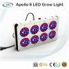 High Power 240W LED Grow Light for Grow Tent Used