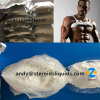 99% Purity Build Muscle Raw Steroids Testosterone Isocaproate Test Isocaproate