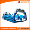 Inflatable Water Slide Slides for Adults with Double Lane (T11-011)