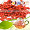 2014 Crop Ningxia Goji Berry with Free Sample