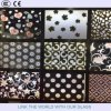 Decorative Glass/Wall Glass/Background Wall Glass/4mm, 5mm, 6mm