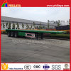 Top Rank ABS Assembled Tri-Axle New Container Semi Trailer