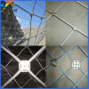 for Mountain Flexible Mesh (professional factory from China anping)