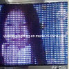 5mm Rgbywp 392PCS LED Stage Video Cloth (LE058B)