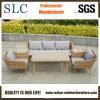 Lounge Sofa (SC-1724)