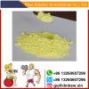 Sex Enhancer Jinyang Base Powder CAS 472-61-364 for Erectile Dyunction