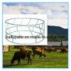Wholesale Cattle Hay Ring Feeders Steel Rack