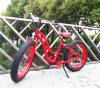 Nice Woman′s Fat Tire E-Cycle