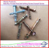 Carbon Steel Galvanized Wedge Anchor Bolt with Nut