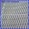Galvanized Plaster Expanded Metal Mesh with Factory Price