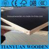 12mm Full Eucalyptus Core Marine Plywood