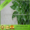 HDPE Green Anti Bird Net