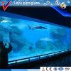 Large Acrylic Panorama Window for Underwater World