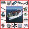 Marine Parts Parts for Marine Engine Kta19 Kta38