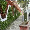 Hot Sale Hotel Restaurant Evergreen Flower Plant Wall