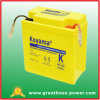 Newest Design American Standard Motorcycle Battery 6V 6ah