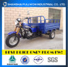 Fl200zh-E Full Luck China Quality 200cc Cargo Tricycle EEC for Europe