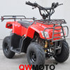 110CC Mini ATV Quad (QW-ATV-01C)