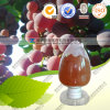 Supply Natural Red Wine Polyphenols Red Wine Extract