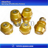 China Diesel Fuel Injection Oil Nozzles