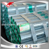 Gi Conduit Pipe ANSI C80.1 ERW Welded Galvanized Pipe