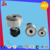 CF10 Needle Roller Bearing with High Precision of High Accuracy