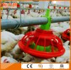 Chicken Farm Equipment with Complete Environmental Control House
