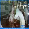 Sheep Goat Carcass Hoist Machine Slaughter House Equipment