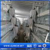 Good Quality and Hot Sale Chicken Cage