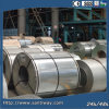 """Stainless Hot Rolled Prepainted Galvanized Steel Coil /PPGI"