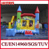 2015 New Style Inflatable Bouncer with Slide for Sale (J-BC-045)