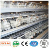 a Type Best Price Poultry Farm Egg Layer Chicken Cages Equipment System in China