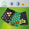 China Factory Directly Wholesale Food Grade Disposable Vacuum Forming Fruit and Vegetable Packaging Trays
