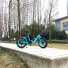 26*4.0inch Fat E-Bike with Lithium Battery