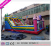Newest Design Hot Inflatable Factory Amusement Park Wit Ce