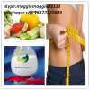 Weight Loss Powder Cetilistat for Fat Burning CAS 282526-98-1