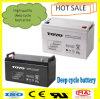 Gel 12V100ah Dry Battery Lead Acid Batteries for Inverter