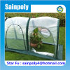 Most Popular China Supplier Plastic-Film Garden Greenhouse