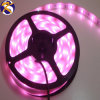 IP67 Silicone Waterproof Flexible LED Strip Purple SMD3528 60LEDs