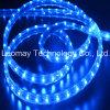 220V 3528SMD Blue Flexible LED Strips Channel letters List Light