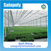 Low Price Easily Installed PC-Sheet Greenhouse