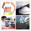 Natural Extract Synephrine Oxedrine for Weight Loss