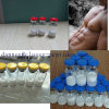 Peptide Fragments 176-191 2mg/Vial for Body Shape in UK