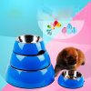 Design Dog Round Metal Bowl Quality Ss Pet Feeding Tool