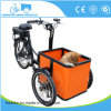 Mini 3 Wheels Electric Motorcycle Cargo Tricycle Dog Cart